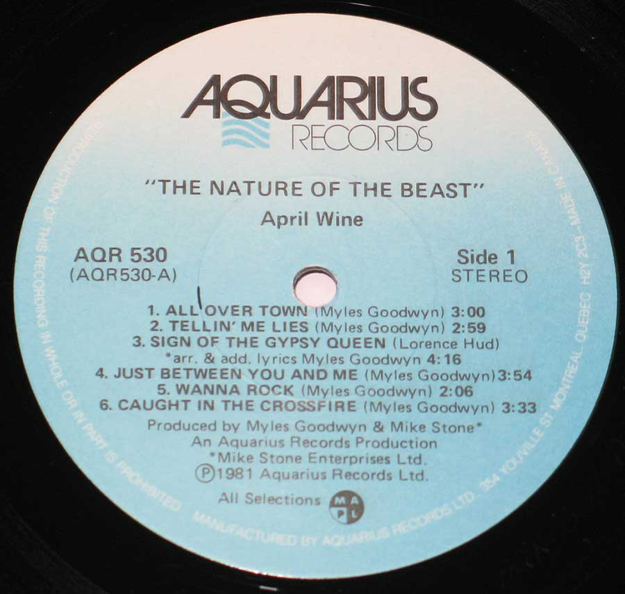 "Close-up Photo of ""The Nature of the Beast"" Record Label"