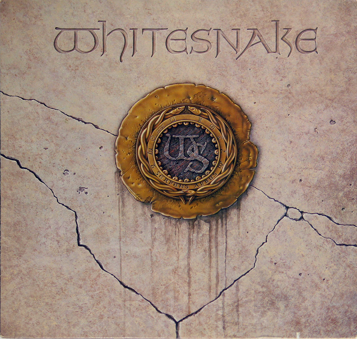 High Resolution Photos of whitesnake self-titled usa