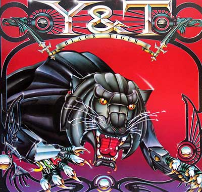 "Thumbnail Of  Y&T - Black Tiger ( 12"" LP ) album front cover"