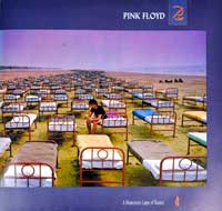 "PINK FLOYD - Momentary Lapse of Reason  12"" LP"