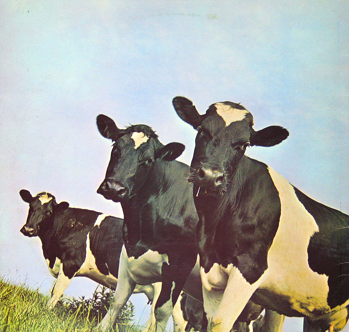 High Resolution Photo #2 PINK FLOYD Atom Heart Italy UKA4