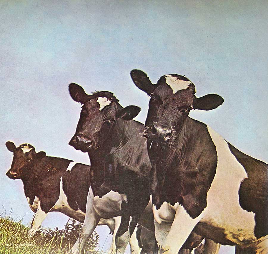 High Resolution Photo #2 PINK FLOYD Atom Heart Japan