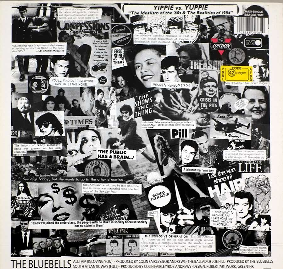 Photo of album back cover THE BLUEBELLS – All I Am